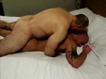 Orsi gay inculata intensa