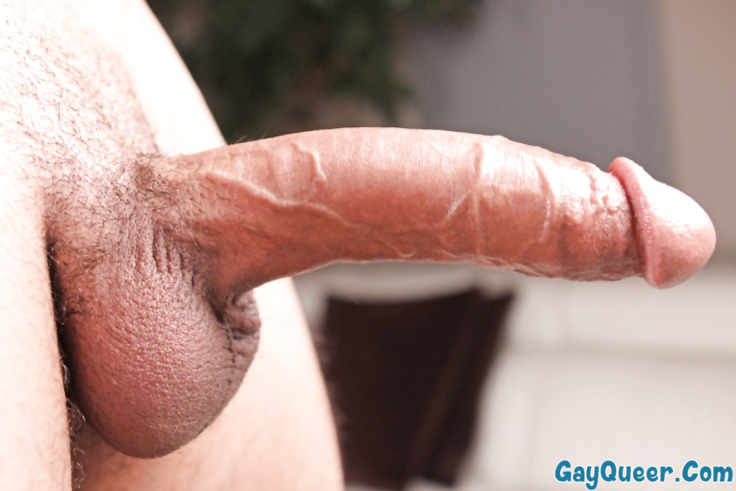 Hubert caresses his thick chode, perky nipples and big balls with no shame