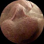 Avatar di IlTeo69