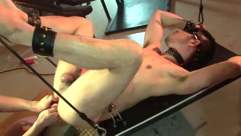 video sadomaso gay ragazzi gay italiani