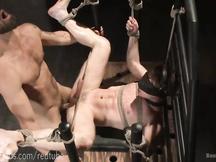 Due caldi padroni gay brutalizzano schiavo