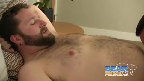 Peloso orso orgia